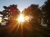Waldbaden im Sonnenaufgang